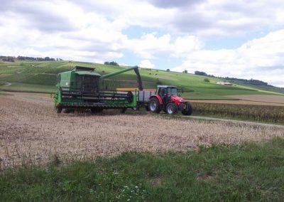 Agro-Maehdrusch-Feld
