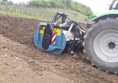 Agro-Weinbau-imants26