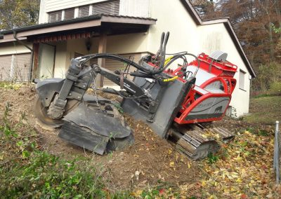 ForstGartenKomunal-Baumstockfraesen-Garten-bf110