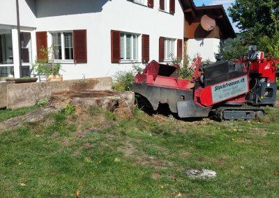 ForstGartenKomunal-Baumstockfraesen-Garten-hagedorn88