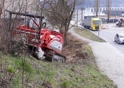ForstGartenKomunal-Gehoelzpflege-bf123