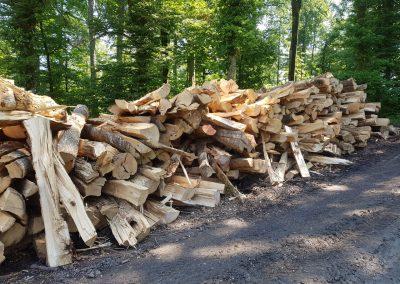 ForstGartenKomunal-Holzenergie- brennh56